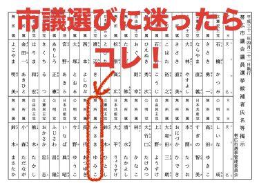 選挙のミカタ〜みさきを探せ!!
